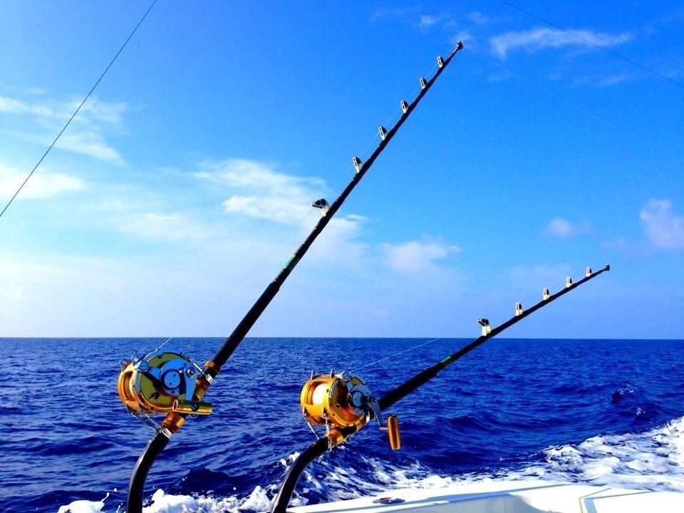 【2020年】ロッドおすすめ人気ランキング25選|釣りスタイル・ターゲット別にご紹介