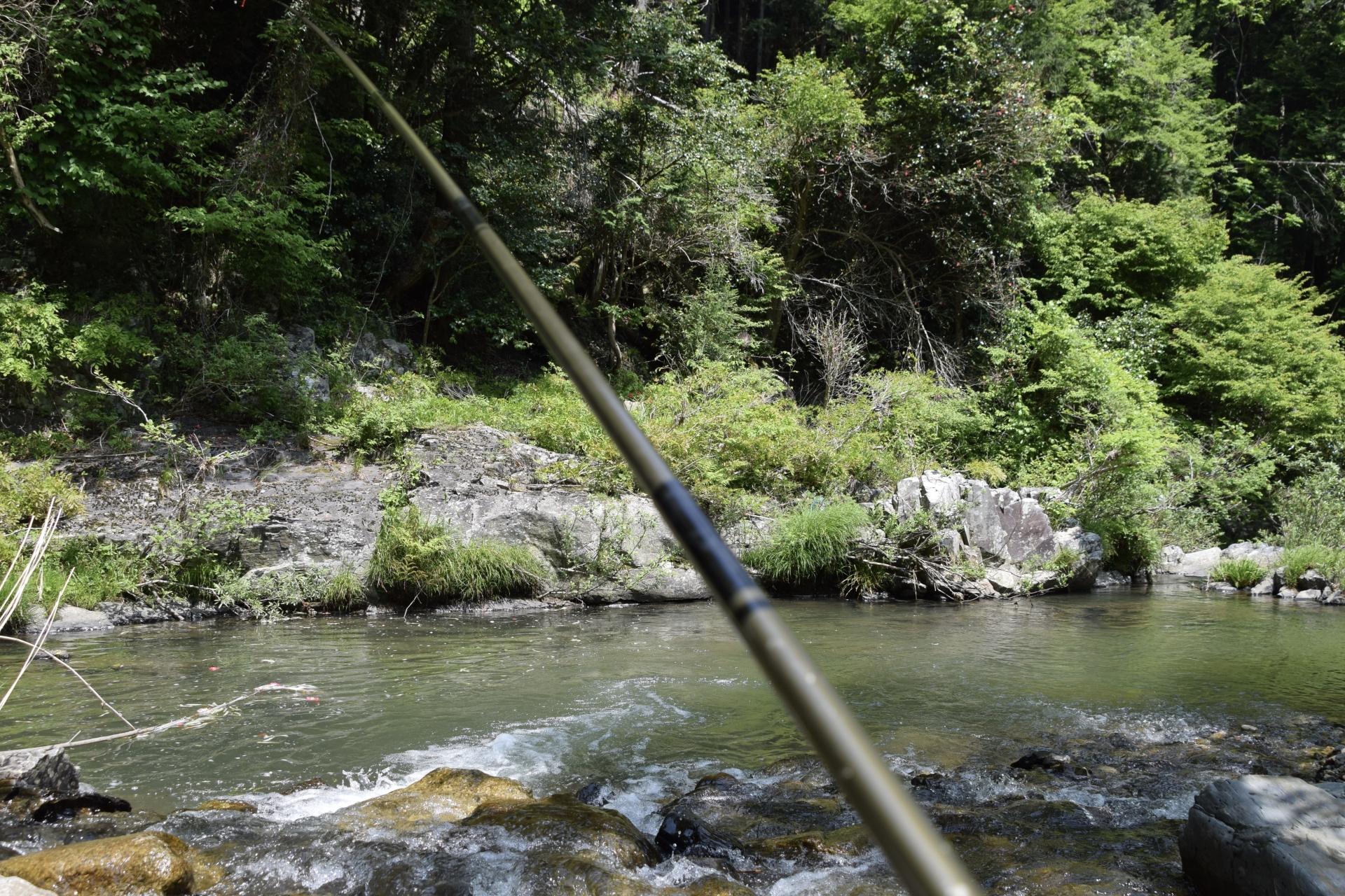 テンカラ釣り